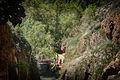007520 - Monasterio de Piedra (8736836896).jpg