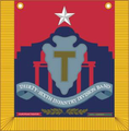 036th Infantry Division Band Tabard.png