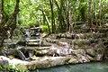 1012 - Erawan Waterfall, 4th floor, is the face of the root.jpg
