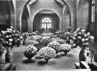 Horticultural Hall (Boston) - Image: 1901 chrysanthemum show Horticultural Hall Mass Ave Boston November