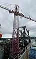 190830 Kroll Giant Crane.jpg