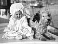 1910 Australian baby and a dog on a sailing ship (7082739619) (cropped).jpg