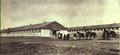 1952-08 国营第三号马厂.png