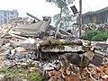 2008년 중앙119구조단 중국 쓰촨성 대지진 국제 출동(四川省 大地震, 사천성 대지진) SSL26847.JPG