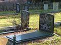 2008 Silvolde alter jüdischer Friedhof Gräber.jpg