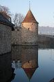 20110309 Schloss Hallwyl 001.jpg