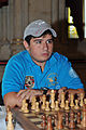 20130824 Vienna Chess Open IM Cemil Can Ali Marandi 4343.jpg