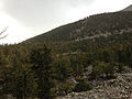 2014-09-15 15 11 11 View of Brown Lake from the Bristlecone Trail and the Glacier Trail in Great Basin National Park, Nevada.JPG