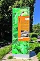 2017-08-23-bonn-messdorfer-feld-das-gruene-c-tor-burgweg-02.jpg