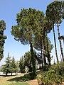 2017.05.05-8 Yad Vashem.jpg