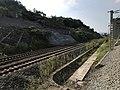 201908 Abolished Sichuan-Guizhou Railway of Old Baishatuo Yangtze River Bridge.jpg