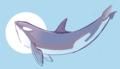 2 Iris Hopp Orca Sun Moon Whale Dolphin.png