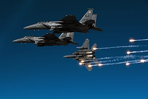 4th Operations Group - F-15Es - 2010