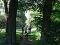 617683 A 683 Krakow Krzesławice Wankowicza 25 park w zespole dworsko parkowym 46.JPG