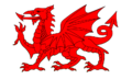 Heraldic Welsh Red Dragon.