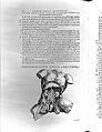 A. Vesalius, De humani corporis fabrica, Wellcome L0027060.jpg