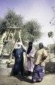 ASC Leiden - van Achterberg Collection - 6 - 054 - Le coordinateur de l'ONG (organisation non gouvernementale) Tchichitt - Tabelot, Niger - janvier 2005.tif