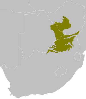 Bushveld - Extent of bushveld in Southern Africa.