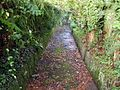 A Section of Drake's Leat in Yelverton, Devon.jpg