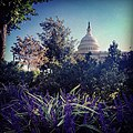 A beautiful evening on Capitol grounds (9790210154).jpg