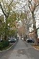 A város útjain közlekedve... - panoramio - Szemes Elek (101).jpg