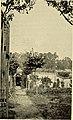 Adolph Sutro (1895) (14765002495).jpg