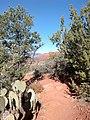 Aerie Trail, Sedona, Arizona - panoramio (7).jpg