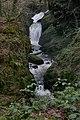 Afon Cynfal gorge and waterfalls.jpg