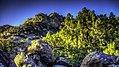Agua Dulce - Early Morning - Vasquez Rocks (15296534141).jpg