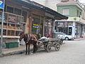 Alasehir horse carriage.jpg