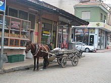 Alasehir horse carriage.jpg