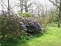 Alby Gardens - geograph.org.uk - 774364.jpg