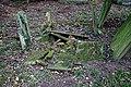 All Saints Church, Berners Roding, Essex damaged grave.jpg