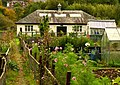 Allotments, Moncreiffe Island - geograph.org.uk - 1004332.jpg