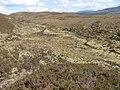 Allt Bealach a' Chaorainn - geograph.org.uk - 820534.jpg