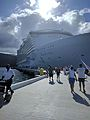 Allure of the Seas (31974440726).jpg