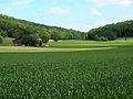 Altberg 2012-05-13 15-00-49 (P7000).JPG