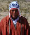 Amerindian man from Peru.png