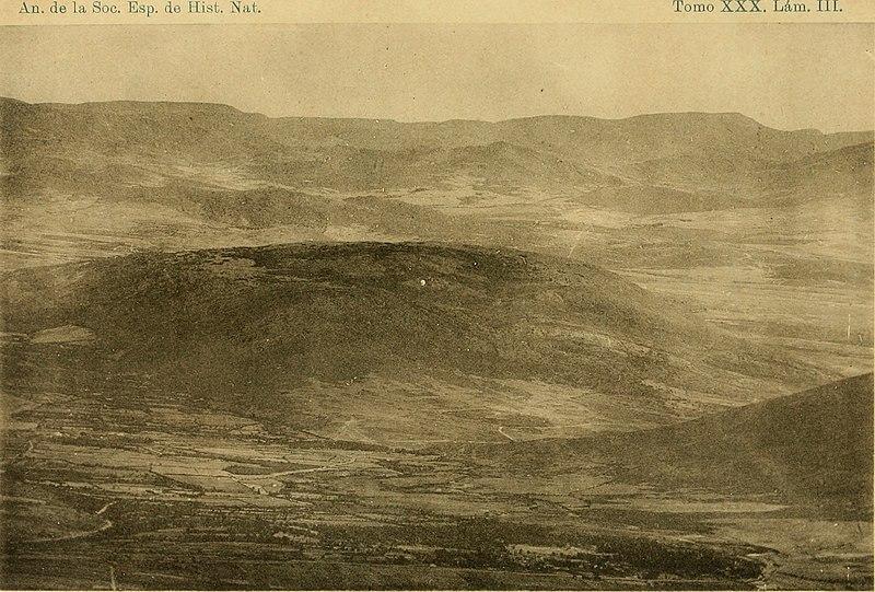 File:Anales de la Sociedad Espala de Historia Natural (1901-1902) (17980168999).jpg