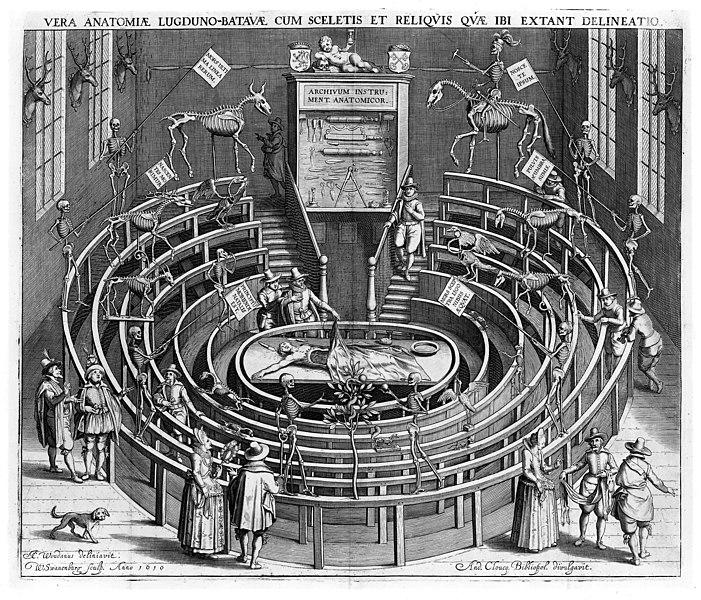 File:Anatomical theatre Leiden.jpg
