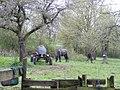 Andel- Kordelweg - geo.hlipp.de - 37833.jpg