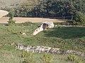 Anfiteatro di Suasa - Vomitorium laterale 6.JPG