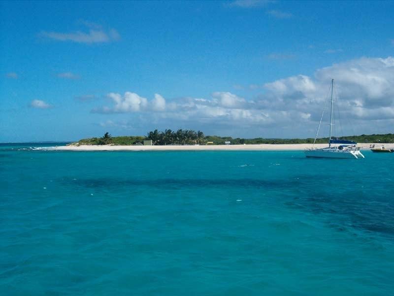 Anguilla Prickly-Pear