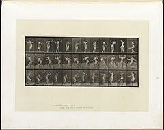 Animal locomotion. Plate 191 (Boston Public Library).jpg