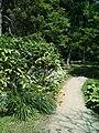 Arboretum-MZ.jpg