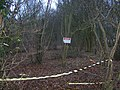 Archery Club in Frid Wood - geograph.org.uk - 1126374.jpg