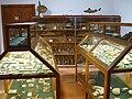 Artà Museum Naturgeschichte 02.JPG