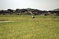 Ashiya-machi, Onga-gun, Fukuoka Prefecture - Rural Scene (3).jpg
