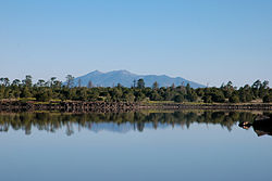 Ashurst Lake - to the north.jpg