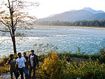 At the core of Manas National Park.jpg